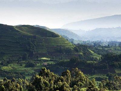 uganda2